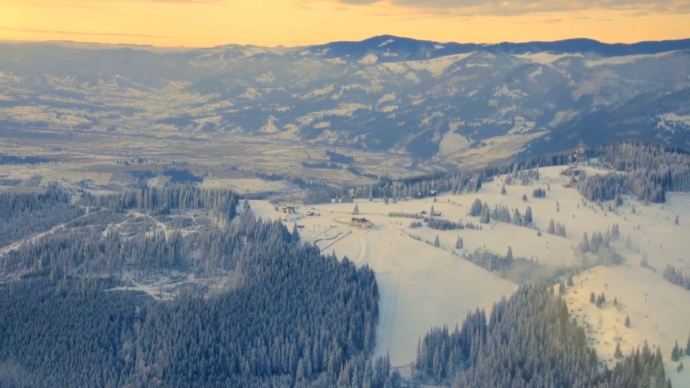 iarna_dorna_arini