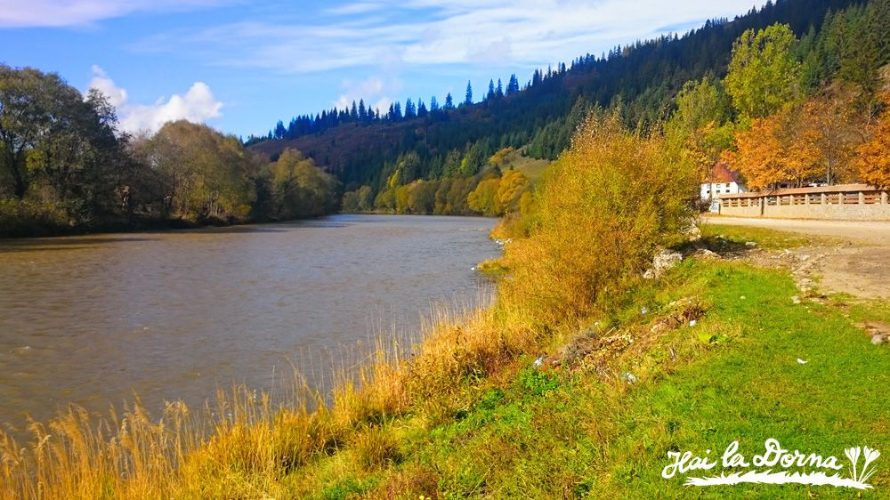 Peisaj în Bucovina: râul Bistrița Aurie