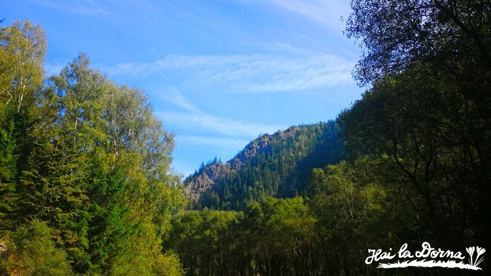 Peisaj în Bucovina: Cheile Zugrenilor, Dorna Arini