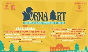 Poveste de la Dorna Art – nostalgia primei ediții de festival