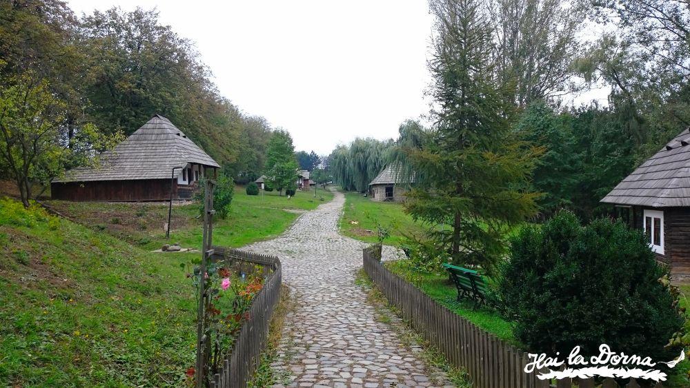 Intrare în Muzeul Satului Bucovinean.