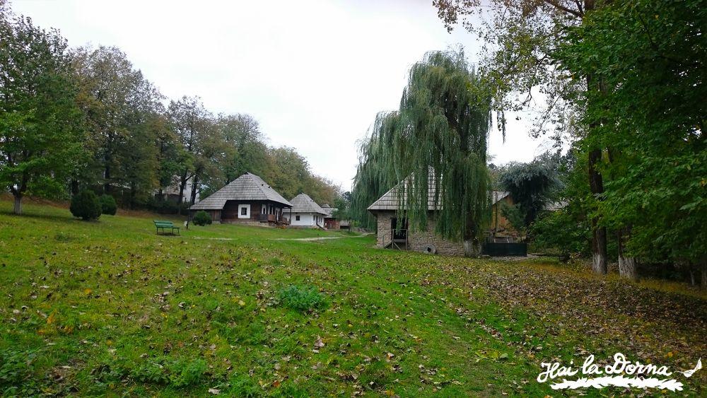 Primii pași în Muzeul Satului Bucovinean Suceava.