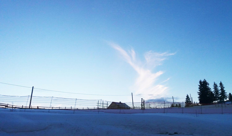 [Galerie foto] Final de iarnă în Pasul Tihuța