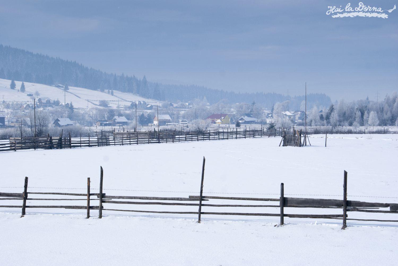 peisaje_iarna_cosna_10