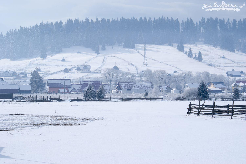 peisaje_iarna_cosna_4