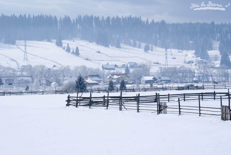 peisaje_iarna_cosna_7