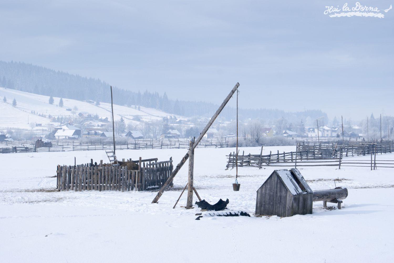 peisaje_iarna_cosna_8