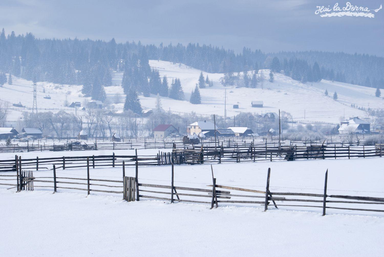 peisaje_iarna_cosna_9