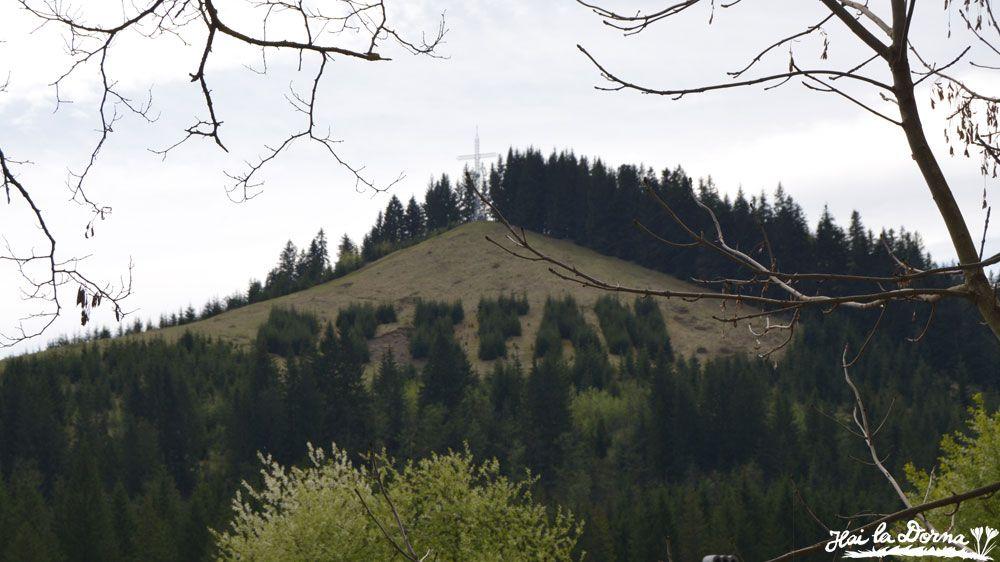 Dealul de pe care Ștefan cel Mare a tras cu săgeata, văzut din parcarea mănăstirii