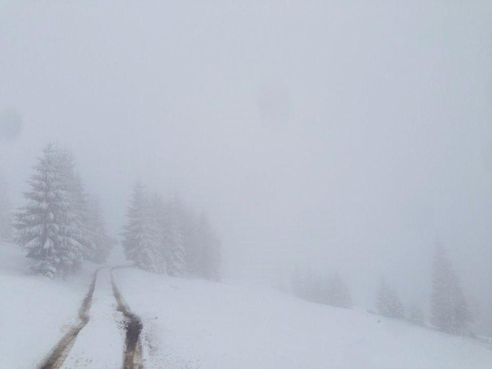 ninsoare_vatra_dornei_4, zăpadă la vatra dornei