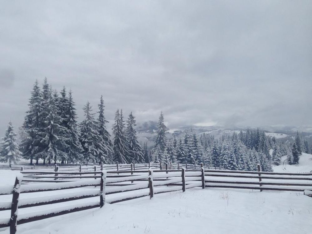 ninsoare_vatra_dornei_5, zăpadă la vatra dornei