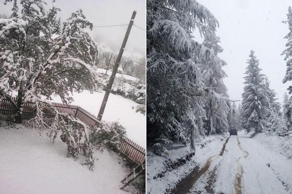 ninsoare_vatra_dornei_8, zăpadă la vatra dornei