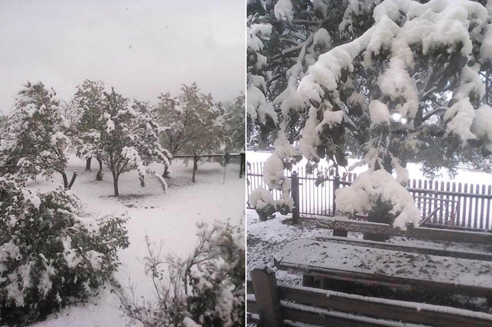 ninsoare_vatra_dornei_9, zăpadă la vatra dornei