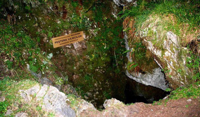 Peștera Liliecilor din Masivul Rarău, rezervație speologică și biospeologică
