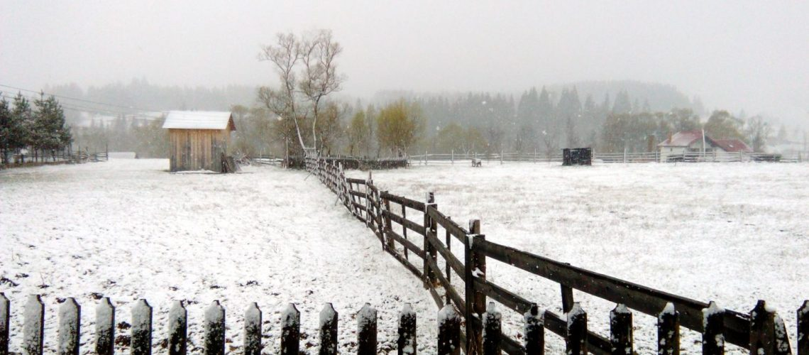 Zăpadă la Vatra Dornei în luna aprilie! În zona de munte a Bucovinei a nins ca în povești