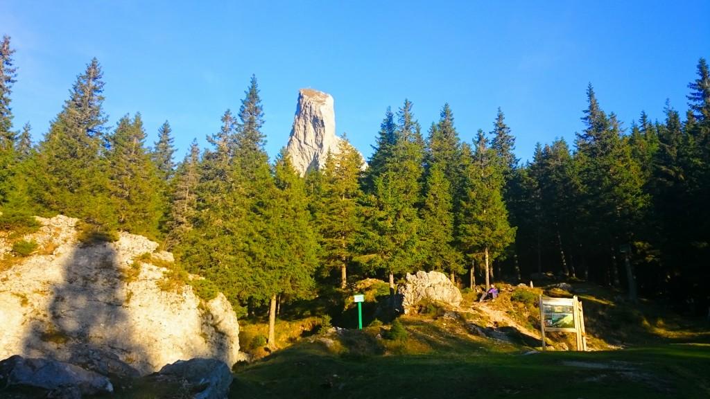Transrarău, cel mai frumos drum montan din Țara Dornelor.